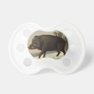 Boar Pig Vintage German Painting Pacifier