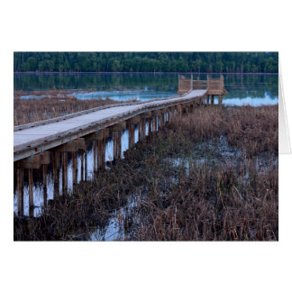 Boardwalk Above Bog in Bloomington Refuge Card