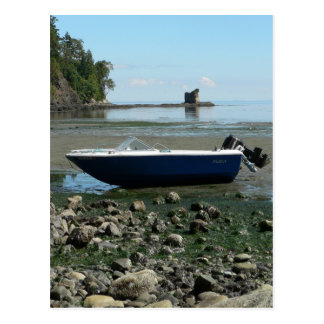 Boat At Low Tide Postcard