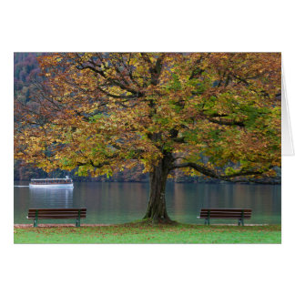 Boat on a lake in fall, Germany Card
