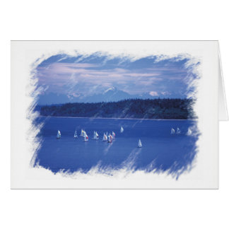 Boat Regatta Sailboats in Puget Sound Card
