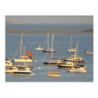Boats in Provincetown Bay Postcard