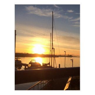 Boats on Marina at Sunset Postcard