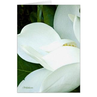 Bobby's Magnolia III Card