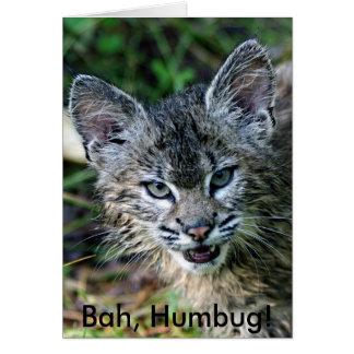 BobCat, Bah, Humbug! Card