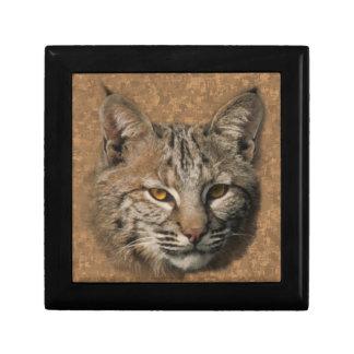 Bobcat Gift Box