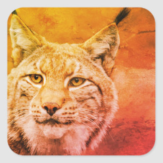 Bobcat Wildlife Stickers