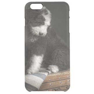 Bobtail puppy portrait in studio clear iPhone 6 plus case