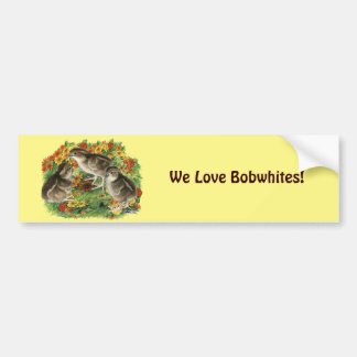 Bobwhite Garden Chicks Bumper Sticker