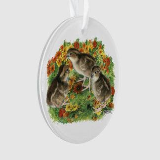 Bobwhite Garden Chicks Ornament