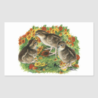 Bobwhite Garden Chicks Sticker
