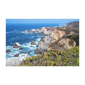Bodega Head Rugged Coast and Trail Canvas Print