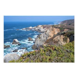 Bodega Head Rugged Coast and Trail Photo Print