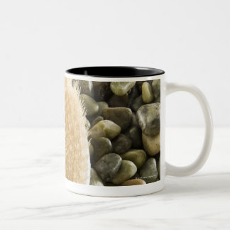 Body scrub brush on rocks Two-Tone coffee mug