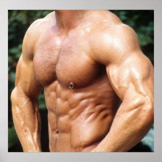 Bodybuilder Poster - Color #457