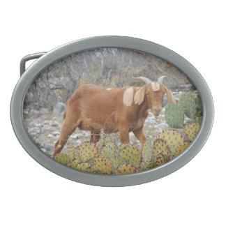 Boer goat belt buckle
