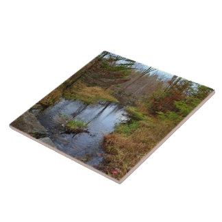 Bog Brook Later Autumn 2015 Ceramic Tile
