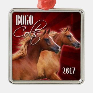 BOGO Burst 2017 Ornament