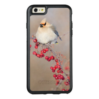 Bohemian waxwing in winter, Canada OtterBox iPhone 6/6s Plus Case