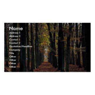 Bois de hêtre d'automne, Pays-Bas rural en Europe Carte De Visite Standard
