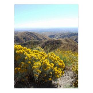 Boise Foothills Postcard