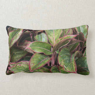 Bold and Beautiful Leaf Pillow