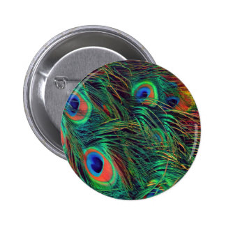 Bold and Rich Peacock 2 Inch Round Button
