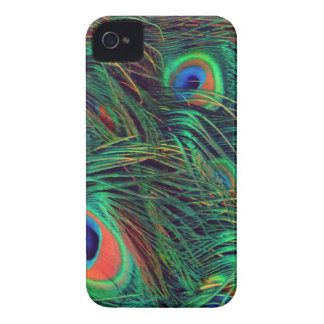 Bold and Rich Peacock iPhone 4 Cases