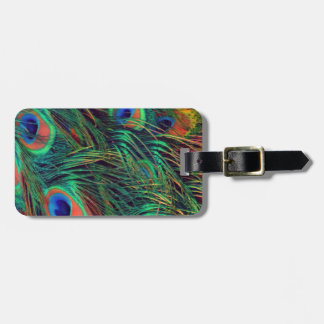 Bold and Rich Peacock Luggage Tag