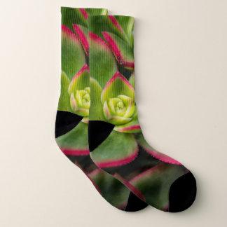 Bold Colorful Cactus Photo Socks 1