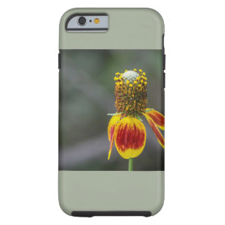Bold Colorful Wildflower iPhone 6/6s Case