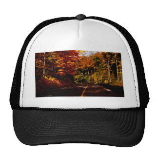 Bold Fall Colours on St Joseph Island Trucker Hat
