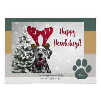 Bold Modern Pet Lover Funny Christmas Photo Card