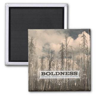 BOLDNESS MAGNET