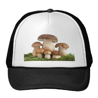 Boletus Edulis mushrooms Trucker Hat