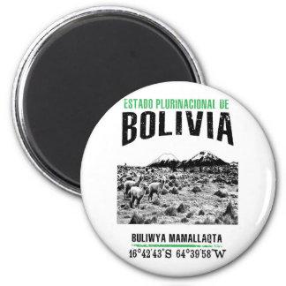 Bolivia Magnet