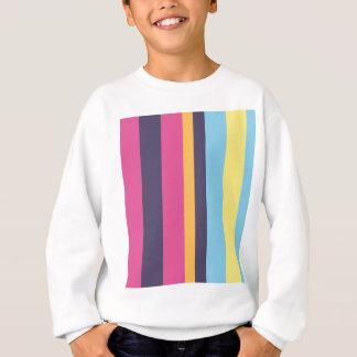 Bolivian stripes sweatshirt