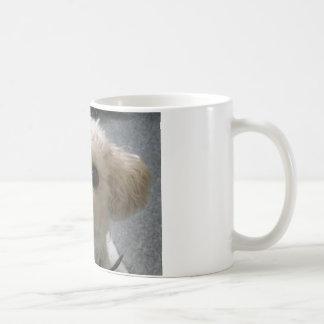 bolognese coffee mug