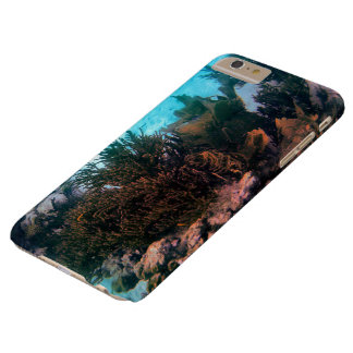 Bonairean Reef Barely There iPhone 6 Plus Case