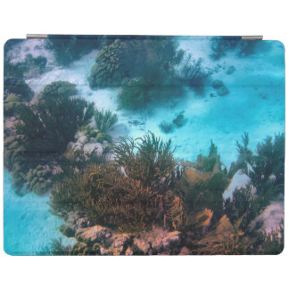 Bonairean Reef iPad Cover