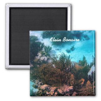 Bonairean Reef Magnet