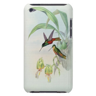 Bonaparte s Star Fronted Hummingbird coloured lit iPod Case-Mate Cases