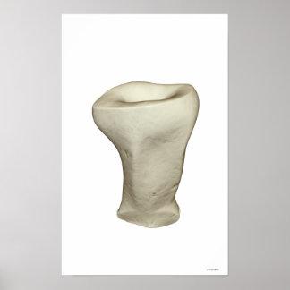 Bones of the Finger 2 Print