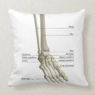 Bones of the Foot 6 Throw Pillows