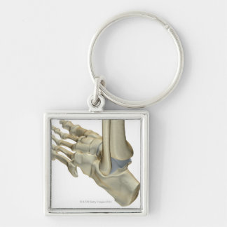 Bones of the Foot Keychain