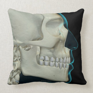Bones of the Head and Face 2 Pillow