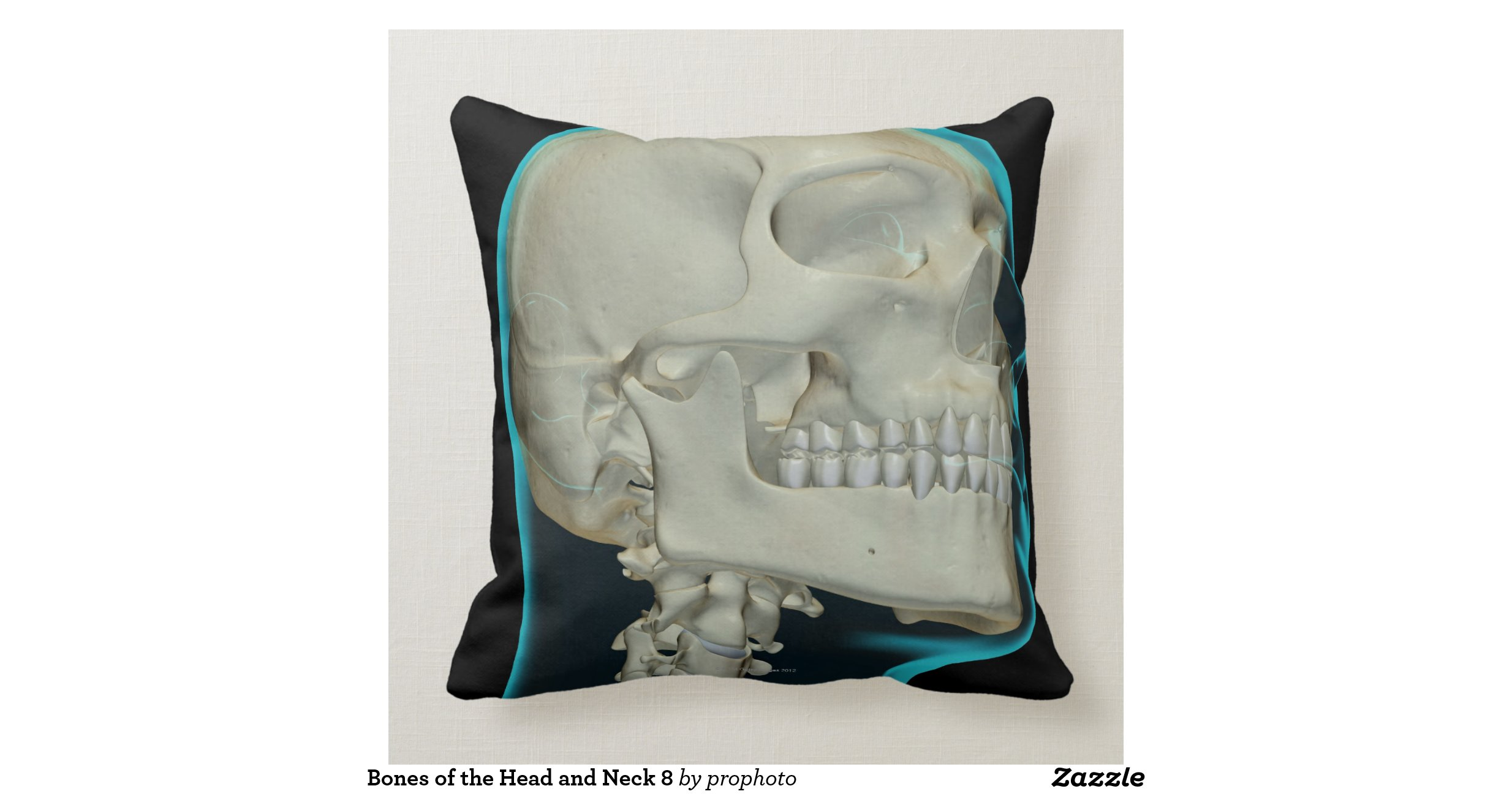 Throw Pillows Under 5 Dollars : Bones of the Head and Neck 8 Throw Pillows Zazzle