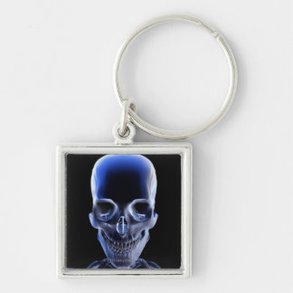 Bones of the Head and Neck 9 Keychains