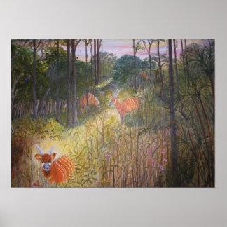 Bongo Antelopes painting Poster