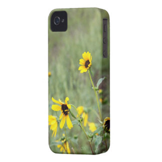 Bonito iPhone 4 Barely There Case